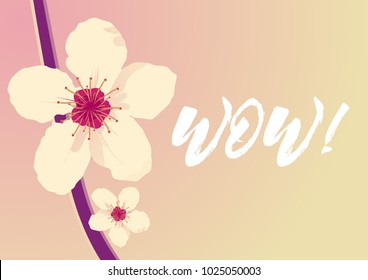 cd5d8bf68 Wow Beautiful Greeting Card Background Banner Stock Vector (Royalty ...