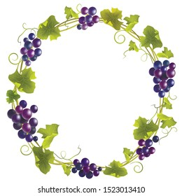 Wreath with blue grape. Round frame bunches of grapes. Vector illustration.