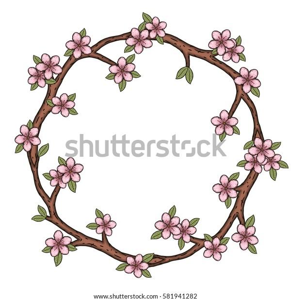 The wreath of cherry blossom branches. Sakura flowers.