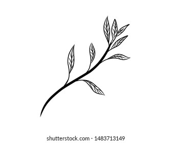 Wreath floral branch in hand drawn style. Outline doodle icons set. Flower line sign Scribble brush collection. Simple sketch wedding design element black contour Vector illustration isolated on white