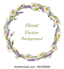 Wreath frame with lavender flowers, daisies and green leaves isolated on a white background. Vector illustration.