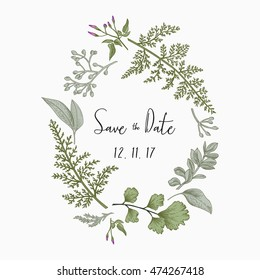 Wreath with herbs and leaves isolated on white background. Botanical illustration. Boxwood, seeded eucalyptus, fern, maidenhair. Save the date. Design elements. Vector. Engraving style.