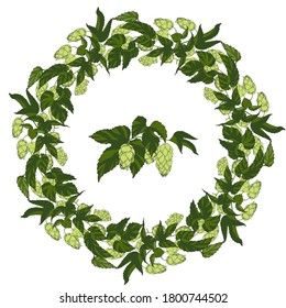 wreath of leaves and cones of hops, hops ingredient for making beer, vector illustration