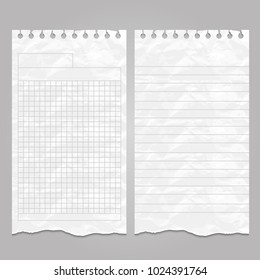 Wrinkled ripped lined page or sheet paper templates for notes or memo. Vector illustration