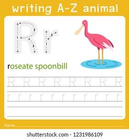 writing a-z animal r