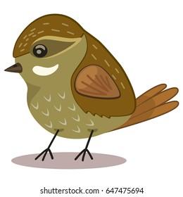 Xenops bird cartoon vector illustration isolated on white background.