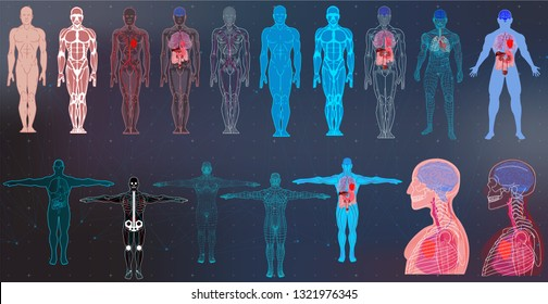 X-Ray Body Collections in Futuristic HUD SCI Style. Modern Scan of Internal Ograns and Human Body. Healthcare Images ( Structure and Arrangement of Organs and DNA Formula) Hud Sci vector collection