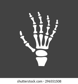 X-ray, bones, skeletonicon vector image. Can also be used for healthcare and medical. Suitable for web apps, mobile apps and print media.