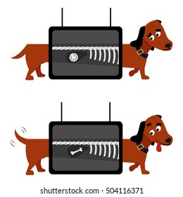 X-ray dog examination vector illustration. Animal health veterinary medicine.