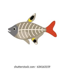 X-ray Fish animal cartoon character