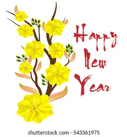 Yellow Apricot Flower, traditional lunar new year in Vietnam - a flower that grows in southern Vietnam, bloom in Lunar New Year.