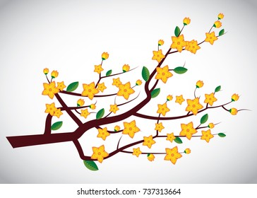 Yellow Apricot flowers (Ochna integerrima) on tree branch - vector