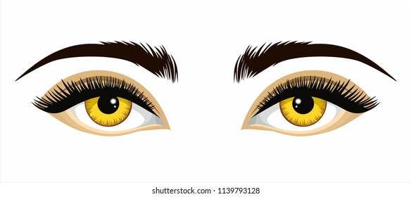 Yellow beautiful eyes