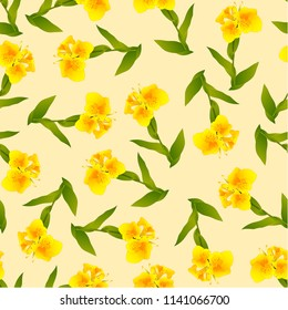 Yellow Canna indica - Canna lily, Indian Shot on Ivory Beige Background. Vector Illustration.
