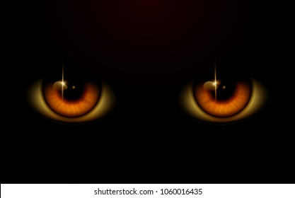 Yellow Eyes. Eyes in the Night