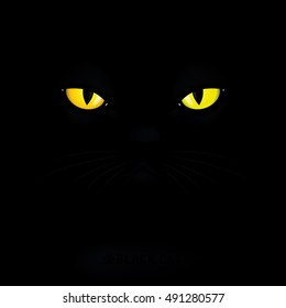 Cat With Yellow Eyes Images Stock Photos Vectors Shutterstock