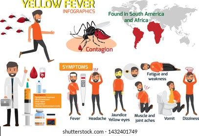 Yellow fever infographic elements. Symptoms, Preventions and Treatment Yellow fever or dengue. Dangerous mosquito. Outbreak from mosquito. There is an outbreak in South America and Africa. vector.