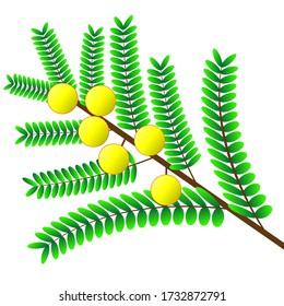 yellow fruit tree branch vector