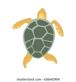 Yellow And Grey Turtle, Part Of Mediterranean Sea Marine Animals And Reef Life Illustrations Series