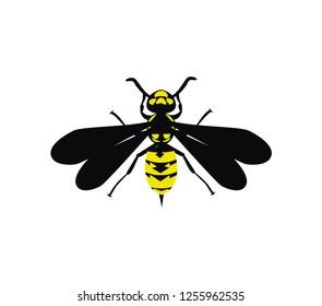 Yellow jacket design vector eps format