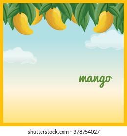 Yellow Mango Hanging On Tree