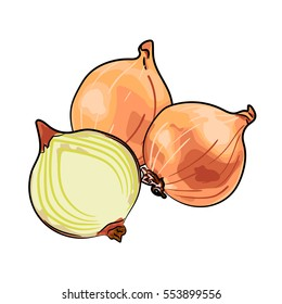 Yellow onion, half onion isolated on white background. Vector illustration hand drawn style