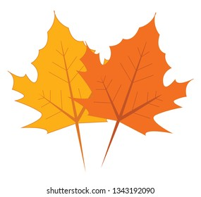 Yellow and orange maple leaves vector illustration on white background