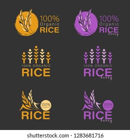 Yellow paddy rice and rice berry logo sign vector design