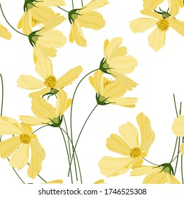 Yellow pastel blooming  Flowers cosmey. Realistic isolated seamless floral pattern on vintage background. Hand drawn wallpaper botanical print.  Vector illustration.