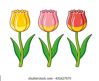 Yellow, pink and red tulips isolated.