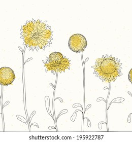 Yellow sunflowers on white background. Vector illustration