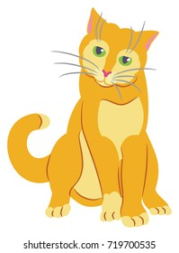 Yellow Tom Cat with Green Eyes