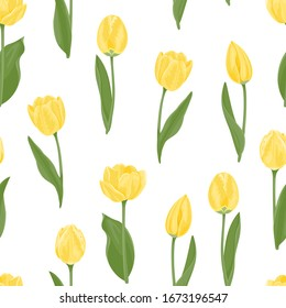 Yellow tulips seamless pattern. Vector floral background with spring flowers. Cartoon illustration of bright beautiful flowers with green leaves and stems isolated on white. Cartoon flat style.