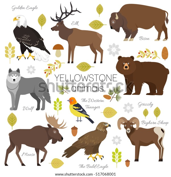 Yellowstone National Park Animals Set Grizzly Stock Vector