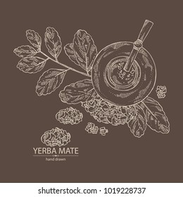 Yerba mate: drink mate, bomber, calabash, and mate branch and leaves. Vector hand drawn illustration.