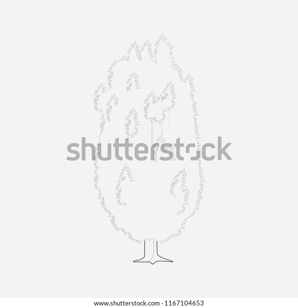 Yew Tree Icon Line Element Vector Stock Vector Royalty Free 1167104653 This drawing tutorial will teach you how to draw cartoon trees step by stepthis video is a companion to the written tutorial on. shutterstock