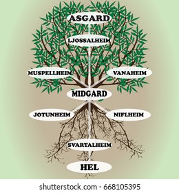 Yggdrasil - vector World tree from Scandinavian mythology. Ash with green leaves and deep-reaching roots is a symbol of the universe. The Vikings believed that Yggdrasill stores and connects 9 worlds