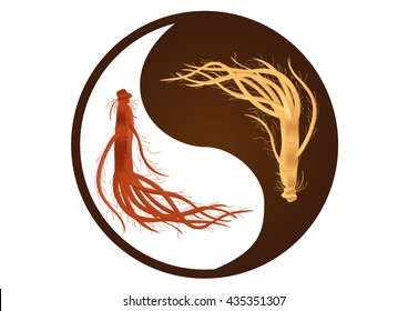 yin yang ginseng vector  , ancient traditional medicine , red (dry) and white