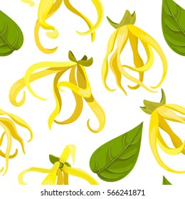 Ylang Ylang (Cananga odorata) seamless pattern vector. Beautiful tropical flowers. For greetings and postcards, banners, textile, prints, decoration, packing, cosmetics, health care, aromatherapy.
