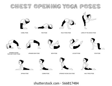 Yoga Chest Opening Poses Vector Illustration Monochrome