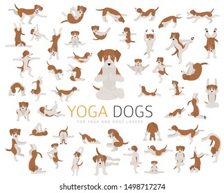 Yoga dogs poses and exercises doing clipart. Funny cartoon poster design. Vector illustration