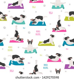 Yoga dogs poses and exercises. French bulldog seamless pattern. Vector illustration