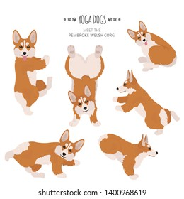 Yoga dogs poses and exercises. Welsh corgi pembroke clipart. Vector illustration