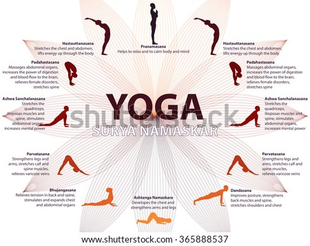immagine vettoriale a tema yoga infographics surya