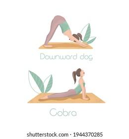 Yoga poses. Illustration vector. Sport, fintess life drawings