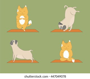 Yoga pugs and cats set. Cute pugs and cats doing yoga. Cartoon funny animals