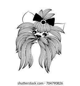 Yorkshire terrier with bow and modern stylish hairstyle. Vector beautiful hand drawn isolated sketchy smiling Yorkie puppy illustration on a white background. Yorkshire terrier vector image for design