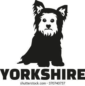 Yorkshire Terrier with breed name