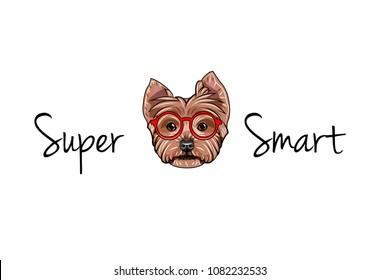 Yorkshire terrier dog geek. Smart glasses. Yorkshire terrier nerd. Clever dog portrait. Super smart text. Vector illustration.