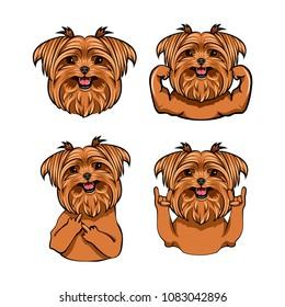 Yorkshire Terrier Dog. Muscles, Middle finger gesture, Horns, Head, Muzzle, Face. Yorkshire terrier set. Dog portrait. Vector illustration.